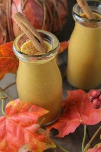 SCD Pumpkin Pie Smoothie NF (*Use SCD legal coconut milk / yogurt, substitute honey for maple syrup & omit stevia...)