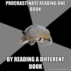 Seriously. I am reading 3 books right now. It's a bit ridiculous, I know, but I choose my books as I choose my music...It all depends on what mood I'm in.