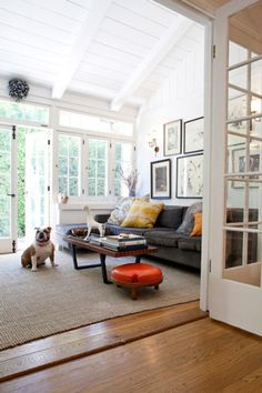 Dogs Inside: A Blog Dedicated To Cute Pups In Interiors
