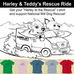 """""""Harley to the Rescue"""" t-shirts are now available!  These shirts are great quality, available in 5 colors and most sizes, there's even a sweatshirt! $8.00 from every sale will go to National Mill Dog Rescue toward rescuing more puppy mill dogs and their veterinary expenses. Thank you for supporting this campaign to save the mill dogs!  Click here for ordering info: http://float.org/  Learn more about Harley to the Rescue: http://www.payitsquare.com/collect-page/9891"""