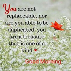 Are you looking for inspiration for good morning funny?Browse around this site for cool good morning funny inspiration. These unique images will brighten your day. Good Morning Beautiful Quotes, Good Morning Quotes For Him, Good Morning Prayer, Good Morning Funny, Good Morning Inspirational Quotes, Good Morning Texts, Morning Blessings, Good Morning Love, Good Night Quotes