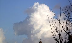 A poodle in the sky! http://dailym.ai/1luCYxE #DailyMail
