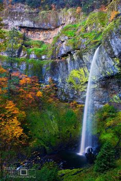 Thin Beauty. Elowah Falls showing off her slender beauty during the fall foliage season in the Columbia River Gorge of Oregon by Adrian Klein on 500px.
