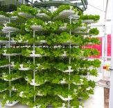 VertiCrop Processes 10,000 Plants Every 3 Days Using Vertical Hydroponic Farming | Inhabitat