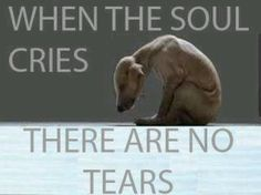 Breaks my heart. Be kind to all animals. Go VEGAN