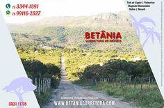Corretora Betânia Rodrigues. Caeté-Açu, Palmeiras, Chapada Diamantina, Bahia. Ofertas de casas e terrenos à venda no Vale do Capão, pontos comerciais.
