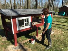 Old Coop Upgraded Into Beautiful New Chicken Home Box Building, Diy Chicken Coop, Nesting Boxes, Side Door, Chickens Backyard, Coops, Trending Memes, Funny Jokes, Entertaining