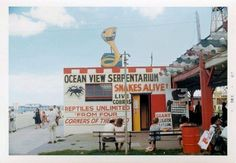 49 Best Who Remembers Virginia S Ocean View Amusement Park