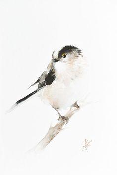 Long-Tailed Tit (Aegithalos caudatus) by Andrzej Rabiega