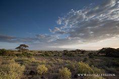 The big open skies of Amboseli Credit: Silverless