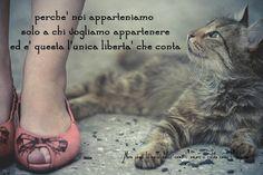 Nero come la notte dolce come l'amore caldo come l'inferno: Perchè noi apparteniamo solo a chi vogliamo appart...