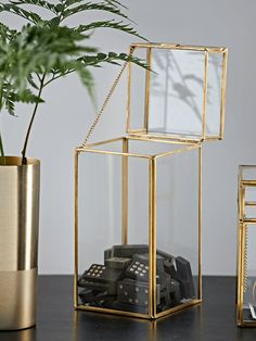 NEW Brass Display Box - Tall