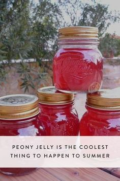Jelly Is the Coolest Thing to Happen to Summer Instead of throwing peonies out after they've wilted, salvage the petals and whip up a delicious peony jelly (you heard us) that'll last all summer and beyond.Heard Heard may refer to: Salsa Dulce, Homemade Jelly, Homemade Food Gifts, Homemade Spices, Home Canning, Canning Tips, Jam And Jelly, Flower Food, Cactus Flower