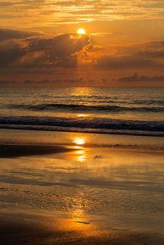 ~~South Carolina Sunrise   a golden seascape   by Karen Jacob~~