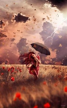 Woman, storm, wind, poppies and umbrella Umbrella Art, Under My Umbrella, Photo Rose, Fantasy Photography, Singing In The Rain, Jolie Photo, Oeuvre D'art, Poppies, Sunflowers