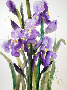 From a local Missouri watercolor artist.I have many of her paintings in my home :.love her work :) Iris Painting, Watercolor Painting Techniques, Watercolour Painting, Arches Watercolor Paper, Watercolor Flowers, Iris Flowers, Flower Art, Calming Images, St Louis