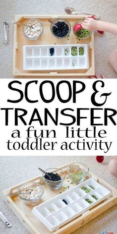 Scoop and Transfer - Busy Toddler - Preschool activities - Toddler Learning Activities, Games For Toddlers, Indoor Activities, Infant Activities, Kids Learning, 2 Year Old Activities, Learning Games, Childcare Activities, Movement Activities
