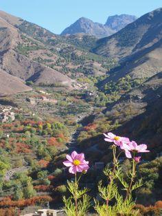 Imlil, Atlas Mountains, Morocco  Our Sahrasoul yogatrip is here!