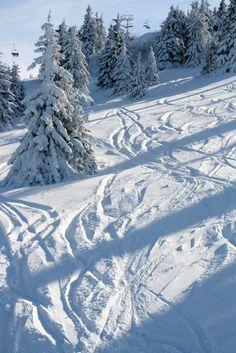 Ski lift on Pančić ~ Kopaonik, Serbia