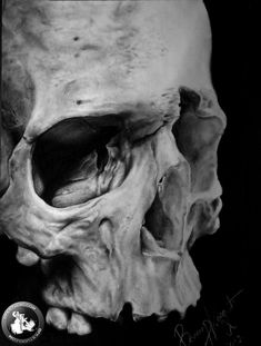 Glen Preece, a UK based artist who specialises in portraiture, creates these fine art skulls using pencil and/or an oily dry brush to create photo realistic drawings. Description from fluxgamestar.com. I searched for this on bing.com/images