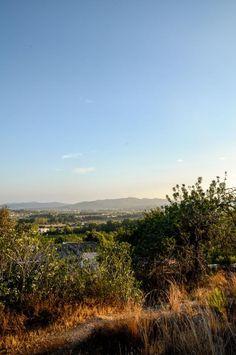 Campo Ibiza #ibizaimages