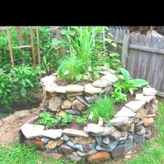 I am in love with this spiral herb garden. I found it on here before I had an account. This will be the first thing I build in my backyard this spring.