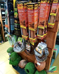 😎 We have many accessories, decor items, live plants, food and more for your reptiles! 🦎🐍🐢 Come see us or visit our online boutique! #MagazooReptiles Reptile Accessories, Live Plants, Reptiles, Decorative Items, Boutique, Food, Turtle, Decorative Objects, Essen