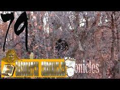 Bigfoot Hotspot Radio - SC EP:79 Is Bigfoot Real? By Jack [Sasquatch Chronicles]
