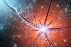 Добрите нива на допамин в мозъка са ключ към добро психично и физическо здраве - https://www.diana.bg/dobrite-niva-na-dopamin-v-mozaka-sa-klyuch-kam-dobro-psihichno-i-fizichesko-zdrave-2/