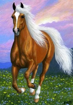 Image from www. - Janet Iannarone - - Image from www. Beautiful Horse Pictures, Most Beautiful Horses, Pretty Horses, Nature Pictures, Animals Beautiful, Cute Animals, Horse Wallpaper, Horse Artwork, Majestic Horse