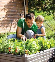 Per quali ragioni si dovrebbe voler costruire on orto rialzato? Conviene davvero? Quali materiali usare? Garden, Garten, Lawn And Garden, Gardens, Gardening, Outdoor, Yard, Tuin
