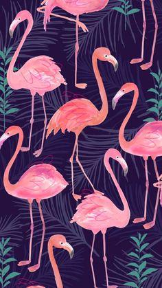 Wallpaper Whatsapp - Flamingos - Wallpaper World Tumblr Wallpaper, Trendy Wallpaper, Wallpaper Iphone Cute, Galaxy Wallpaper, Screen Wallpaper, Cool Wallpaper, Mobile Wallpaper, Pattern Wallpaper, Cute Wallpapers