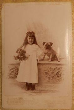 Antique Victorian Cabinet Card PHOTO Wonderful PUG Dog & Girl Michigan Studio
