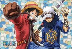 Luffy and Trafalgar