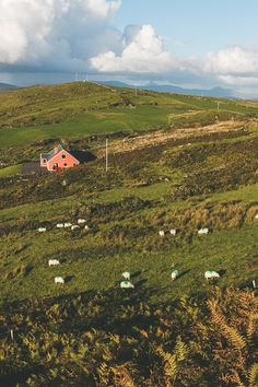 The 10 BEST things to do in Kerry, Ireland (County Guide)