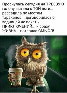 Нечего экспериментировать! Walk Around The World, Russian Humor, Funny Expressions, Clever Quotes, People Quotes, Man Humor, In My Feelings, Cool Words, Best Quotes