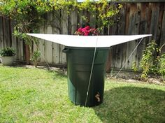 "RainSaucers™ launches new rain catcher, dubbed a ""solar panel"" for the water industry -- RainSaucers Inc. 