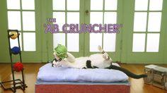 ab cruncher