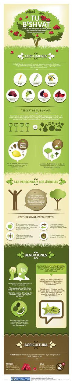 Infografía de Tu B'Shvat