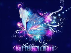 BUTTERFLY - Google Search