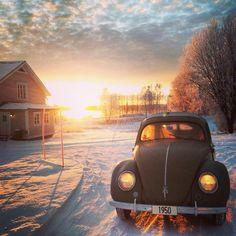 [ Snow Beetle ] (o\_! My Dream Car, Dream Cars, Kdf Wagen, Vw Vintage, Old Classic Cars, Vw Cars, Vw Beetles, Car Photos, Cool Cars
