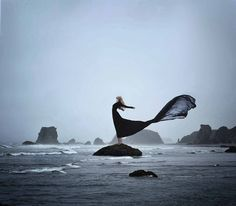 Transience | Flickr - Photo Sharing! beautiful photo from the UGH-MAZING photographer Rachel Baran @Rachel Baran