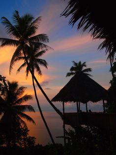 The Village Resort--where we spent part our honeymoon!  Pohnpei, Micronesia