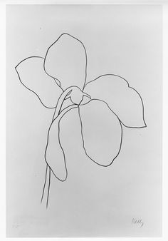 Ellsworth Kelly (American, b. 1923). Cyclamen III; plate 7 of 28 from the Suite of Plant Lithographs, 1964-66, 1964.