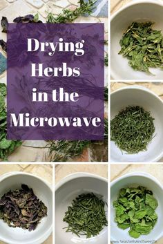 the Microwave - The Quickest Way to Preserve your HerbsHerbs in the Microwave - The Quickest Way to Preserve your Herbs Abacaxi Aperitivo- Ideias e Passo a Passo - 10 Tips from the Resourceful Kitchen The Kitchn's Best of 2013 Homemade Spices, Homemade Seasonings, Hydroponic Gardening, Gardening Tips, Organic Gardening, Gardening Supplies, Vegetable Gardening, Types Of Herbs, Herbs For Health