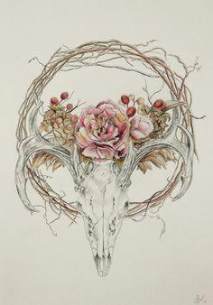 deer skull drawing - Αναζήτηση Google