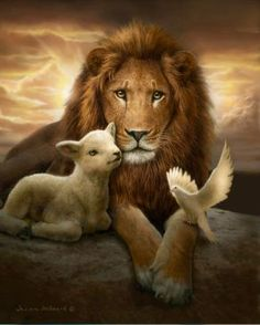 He came as a Lamb, the Lamb of God And He will return as the Lion of Judah Er kam als Lamm, das Lamm Gottes, und er wird als der Löwe von Juda zurückkehren Lion Pictures, Jesus Pictures, Lamb Tattoo, Lion And Lamb, Lion Wallpaper, Jesus Art, Prophetic Art, Biblical Art, Lion Art