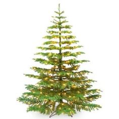 another well lit noble fir noble fir tree noble fir christmas tree artificial christmas - Fir Christmas Tree