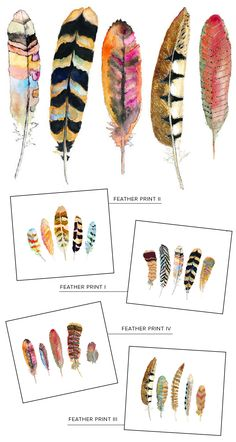 Feather paintings by Sarah B. Martinez via I Suwannee