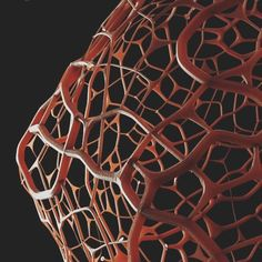 Veins. #octanerenderer #octane #otoy #minimal #cinema4d #c4d #cg #digitalart by jpafrancisco